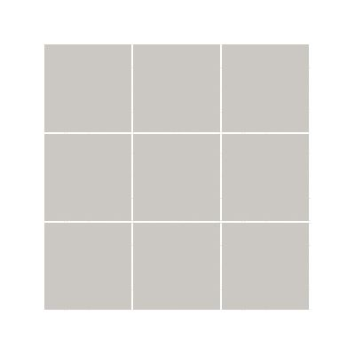 10x10 Pro Color RAL 0007500 Greige Mosaic R9