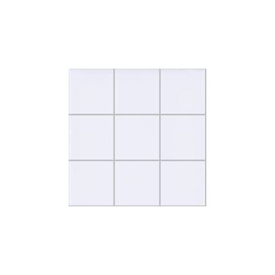 10x10 Pro Color RAL 9016 White Mosaic R10B